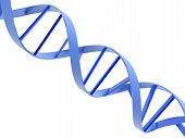 image of double helix  - An isolated blue dna molecule on white background - JPG