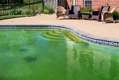 Filthy Backyard Swimming Pool And Patio