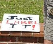 "PENSACOLA, FL - 25 MAY: Protesters in Pensacola, FL gather on May 25, 2013 to support worldwide ""Mar"