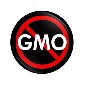 Stop Using Gmo Food, Genetically Modified Organism