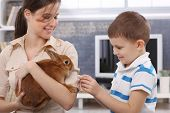 Smiling boy feeding cute pet rabbit handheld by happy young mother.
