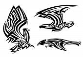 Tribal eagle, hawk and falcon