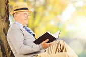 Senior man sitting on a grass and reading a novel in park
