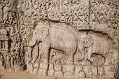 Elephants Rock In Mamallapuram
