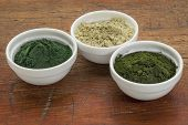 kelp, chlorella and Hawaiian spirulina powders - nutritional supplements from a sea - ceramic bowls against grunge wood