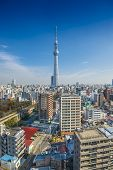TOKYO, JAPAN - FEBRUARY 21, 2013: Tokyo, Japan skyline with Tokyo Skytree. The Skytree is the world'