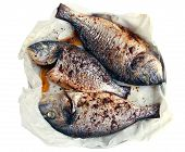 Three Baked Fish