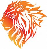 fire lion head on a white background