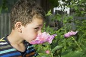 Little Boy Stands Near A Pion.
