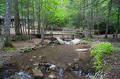 Hungry Mother Creek, Marion, Virginia, USA