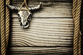 Buffalo skull on wooden background with frame made of ropes