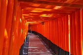 Fushimi Inari Taisha Shrine in Kyoto city