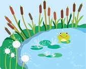 Lake cartoon with lily and frog funny