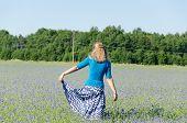 Girl With Blue Skirt Dance In Cornflower Meadow
