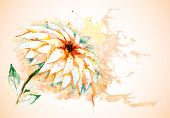 Vector horizontal background with Lily flower