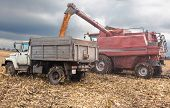 Machines For Harvesting Maize