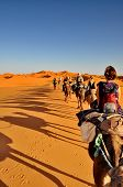 Merzouga Desert - October 01: Tourists In A Camel Caravan In Merzouga Desert, Morocco On October 01,