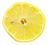Cross Section Of Lemon Isolated On White