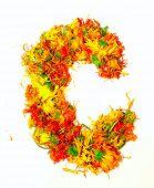 Initials letter  C.