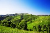 Summer landscape with green hills and clear blue sky