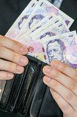 Czech Money In Wallet