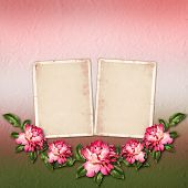 Beautiful Painted Rose With Frames For Congratulations Or Invitation On Abstract Background