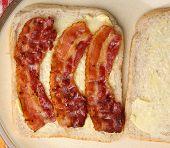Bacon sandwich on buttered wholewheat bread.