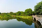 Lake and wooden bridge