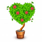 Isolated tree with flowers in clay pot. Form of heart