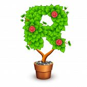 Isolated tree with flowers in clay pot. In the form of letter R