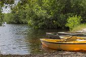 Kayaks In Everglades National Park, Florida, Usa
