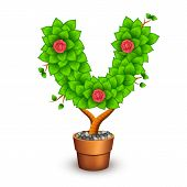 Isolated tree with flowers in clay pot. In the form of letter V