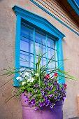 Flowers In Front Of A Santa Fe Gallery Window
