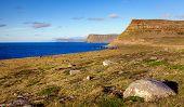 Wesfjords coastline in Iceland