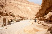 Hiking In A Judean Desert Of Israel
