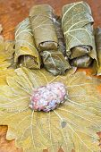 Preparation Dolma From Grape Leaves, Mince, Rice