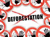 No Deforestation