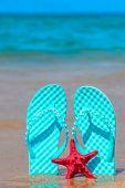 Slates On The Beach On A Sunny Day