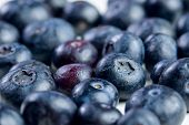 Bunch of bluberries closeup