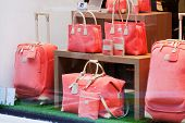 Magnificent women's bags in a shop show-window.