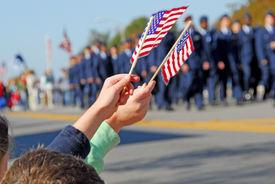 pic of veterans  - Flags at Veteran - JPG