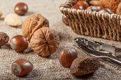 pic of nutcracker  - Set of nuts with a nutcracker - JPG
