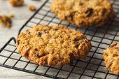 foto of baked raisin cookies  - Homemade Oatmeal Raisin Cookies Ready to Eat - JPG