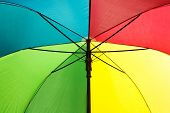 Umbrella - Inside