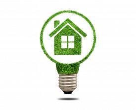 foto of roof-light  - Green grass light bulb with house inside - JPG