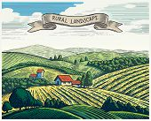 Rural landscape in graphical style, imitating the engraving. Hand drawn and converted to vector Illu poster