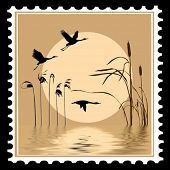 vector silhouette flying birds on postage stamps