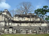Acropolis At Tikal With Stele