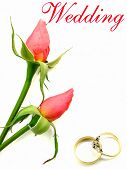 Wedding And Engagement Rings And Roses