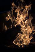 Vertical Flames